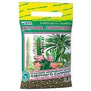 БиоГрунт для кактусов и суккулентов 2,5л фото