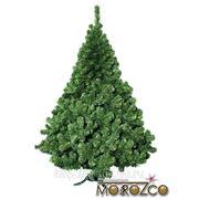 Новогодняя елка Морозко Рождественская 100 см фото