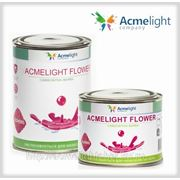 AcmeLight Flower 1л. фото