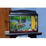 Принадлежности для аквариумов фото