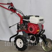 Мотокультиватор SHTENLI 500 7л.с. фото