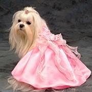 Платье розовое фото