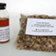 Фармацевтические ветеринарные препараты фото