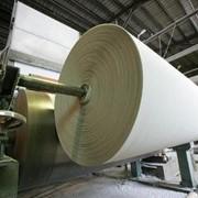 Основа для производства туалетной бумаги М1680 фото