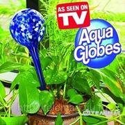 Aquaglobe Система полива растений Акваглоб (Aquaglobe) фото