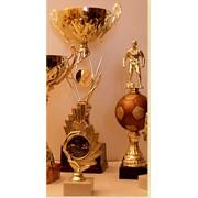 Статуэтка наградная спортивная фото