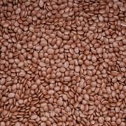 Мастербатч коричневый ( POLYCOLOR  BROWN 04028) фото