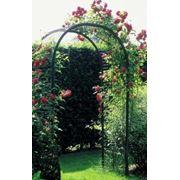Арки садовые декоративные фото