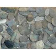 Галька морская серая фото