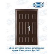 Дверь внутренняя-уличная металлическая правая Форпост двойная СМ02 50мм проем-1200х2050мм фото