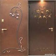 Двери металлические входные фото