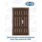 Дверь внутренняя-уличная металлическая левая Форпост двойная СМ02 50мм проем-1200х2050мм фото