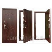двери входные пушкинские горы