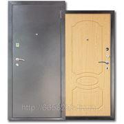 Дверь металлическая МД-03 Светлый орех(антик-серебро) фото