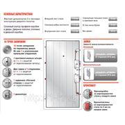 Стальная дверь «Эльбор ПРЕМИУМ» с установкой и доставкой» фото