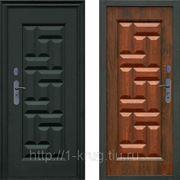 Дверь уличная входная стальная М-223М фото