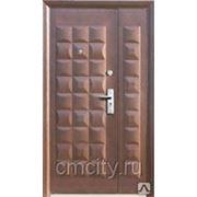 Металлические двери, большие. фото