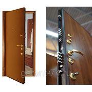 Двери металлические входные элитные-взломостойкие фото