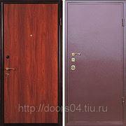 Металлические двери с порошковым напылением фото