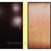 Дверь входная металлическая Антик медь анегри фото