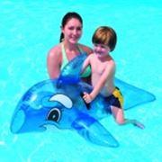 Дельфин для плавания фото