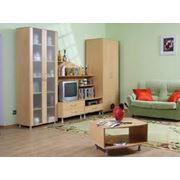 Стенки наборы мебели для общей комнаты фото