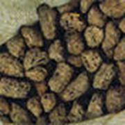 Шрот подсолнечный гранулированный низкопротеиновый Шрот фото