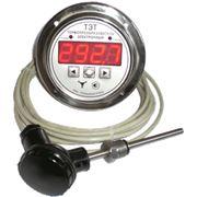 Термопреобразователь (термометр) электронный ТЭТ. фото