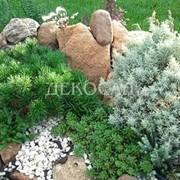 Дизайн каменистых сооружений фото