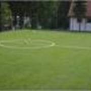 Искусственная трава. фото