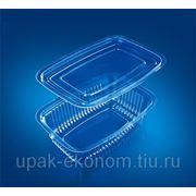 Контейнер пластиковый ИП-750 фото