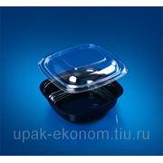 Контейнер пластиковый ИПКВ-250 фото