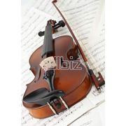 Скрипки фото