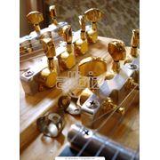 Аксессуары для музыкальных инструментов фото