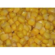 Кукуруза сахарная консервированная фото