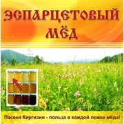 Эспарцетовый мёд фото