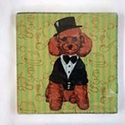 Разделочная доска (подставка под горячее) Собака модница, 18*18 см, стекло фото