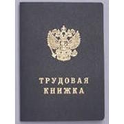 Бланки трудовых книжек нового образцаТК, ТК-1, ТК-2 , ТК-3 фото