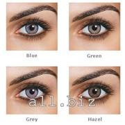 Линзы цветные Ciba Vision FreshLook OneDay Сила от -6,00 до 0,00 фото