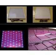 Светодиодные панели фото