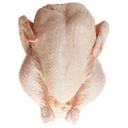 Курица на подложке фото