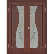 Двери межкомнатные ПВХ фото