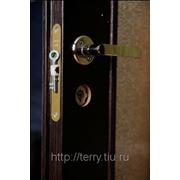 Двери с четвертью фото