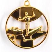 Медаль Спортивная Гимнастика золото фото