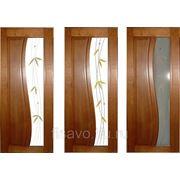 Витражи для межкомнатных дверей DG-283 фото