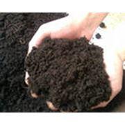 Удобрения содержащие элементы питания растений преимущественно в форме органических соединений фото