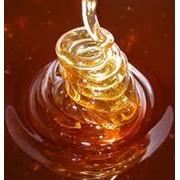 Мед горчичный фото