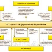 Программа «1С:Предприятие 8. Зарплата и Управление Персоналом фото