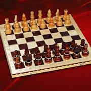 Шахматы турнирные фото
