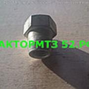 Гайка Колпака (крышки клапанной) Д-240 фото